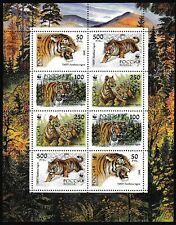 Russia WWF Siberian Tiger Sheetlet of 2 sets 1993 ** MNH SG#6443-6446