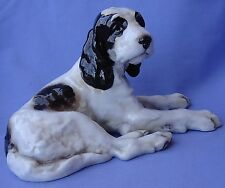 "Welsh English Springer Spaniel Setter Puppy Hunting Dog Germany 8"""