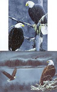Tree Free Greetings Motivo Postal Incl. Sobres Nr.29