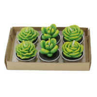 Succulent Cacti Candle Mold Moulds Soap Molds DIY Craft Plaster Silicone Molds q