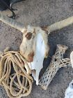 Large Cow Skull natural decoration with tanned cowhide cow hide Vintage