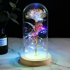 2020 New Wishing Girl Galaxy Rose In Flask LED Flashing Flowers Glass Dome Valen