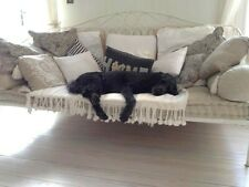 More details for french style wrought iron day bed with mattress and cushions