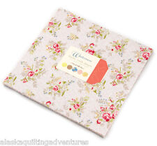 """Moda FABRIC Layer Cake ~ WINDERMERE ~ by Brenda Riddle  42 - 10"""" squares"""
