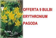 OFFERTA 9 BULBI AUTUNNALI ERYTHRONIUM PAGODA RADICI BULBS