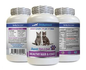 cat vitamins skin and coat - CATS HAIR AND COAT HEALTH 1B - vitamin b for cats