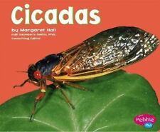 Cicadas (Pebble Plus)-ExLibrary