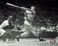 TED WILLIAMS LICENSED BOSTON RED SOX  8X10 PHOTO FENWAY PARK