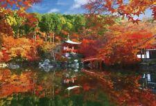 Puzzle 1000 pezzi autunno colori Shine Daigo-Ji Tempio (49x72cm)