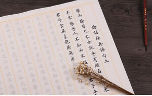 Chinese writing book Xuan Paper copybook Rice Papers f learning hanzi Mandarin