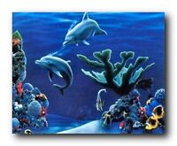 Tropical Fish & Dolphins Coral Reef Underwater Ocean Animal Wall Art Print 16x20