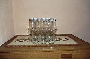 10 Glasflaschen a 250 ml Likörflaschen Schnapsflaschen inklusiv Verschluss NEU