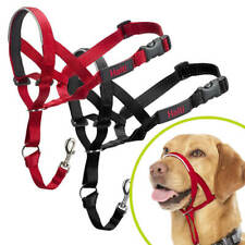 Halti Dog Headcollar Stops Pulling Training Comfortable Halter Harness All Sizes
