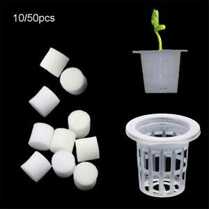 Soilless Hydroponic  Nursery Sponge  Flower Pots Planting Basket Trays