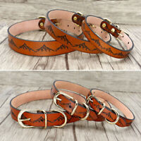 Luxury Real Leather Pet Doggie Dog Collars for Small Medium Large Dogs Pit Bull