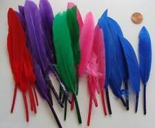 25 PLUMES teintes mix couleurs 8 à 15 cm loisirs créatifs DIY bijoux déco