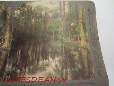 Underwood Charming Retreat Of South Magnolia Gardens Ashley River South Carolina