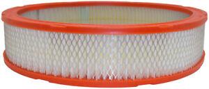 Air Filter Defense CA305