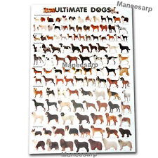 POSTER ULTIMATE BREEDS DOG MORE THAN 100 DOGS SPECIES SHIPPING FREE WORLDWIDE