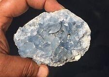 478gr Amas de cristaux de CELESTINE Madagascar ~5007 - CELESTITE CRYSTAL CLUSTER