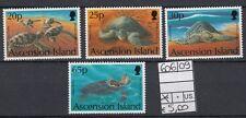 Ascension Island 1994 Tartarughe marine MNH