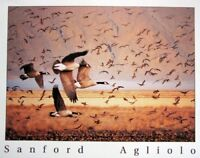 Canada Geese Birds Flying Animal Wall Decor Art Print Poster (16x20)