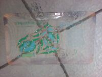 Doral Golf Country Club Blue Monster Eastern Open Course Layout Glass Tray Trump