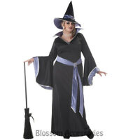 CL514  Incantasia Glamour Witch Costume Halloween Dress Plus Party Outfit & Hat
