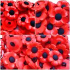 Poppy Rememberance Day Craft Shank Buttons