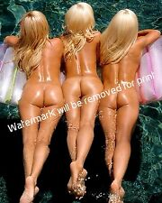 Kendra Wilkinson Playboy Holly Bridget Collectible 8x10 Glossy Color  Photo