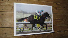 Zenyatta Horse Racing Legend POSTER 4