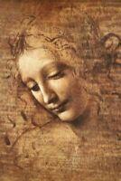 DA VINCI - LA SCAPIGLIATA - ART POSTER 24x36 - 3320