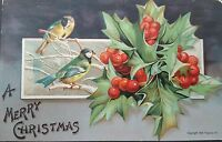 Postcard Christmas A Merry Christmas 1907 P Sander NY Birds Holly Posted 1908