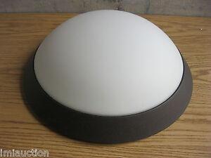 """Access Lighting 20626 Cobalt 5"""" 2 Light Opal Glass Flush Mount Rust"""