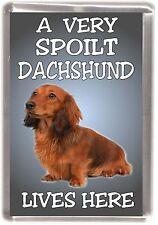 "Dachshund Dog Fridge Magnet No. 1  ""A VERY SPOILT ..... LIVES HERE"" by Starprint"