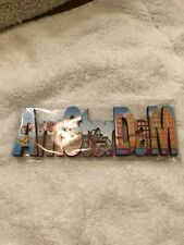 Wow! Lovely And Beautiful Amsterdam Magnet