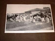 Valona o Vlora nel 1913 Farina campo turco di Giavid Pascià Guerra in Albania