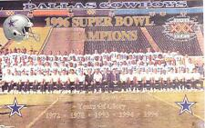 1996 Super Bowl XXX Champions Cowboys Team  Original Norman James Poster