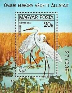 HUNGARY 1980 PROTECTED BIRDS // WHITE EGRETS  S/S MNH