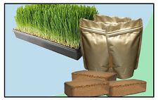 Wheatgrass Organic Home Growing Kit Seeds Soil Trays Juice Shots Cleanse - Small