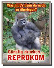 100 professionell gedr. Plakate A3 (versch. Vorlagen!)