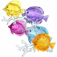 SWAROVSKI CRYSTAL RAINBOW FISH FAMILY.NEW IN BOX.