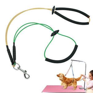 No-Sit Pet Haunch Dog Holder Grooming Restraint Leash Harness Loop fit Table Arm