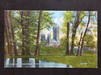RP Vintage Postcard - Kent #22  - Canterbury Cathedral From River - G D & D L