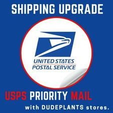 New listing Shipping Upgrade Priority Mail Supplies Expedite Items With Dudeplant Stores