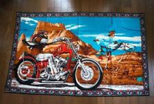 David Mann Ghost Rider Tapestry Harley Easyrider Vintage Tapestry Rare FedEx
