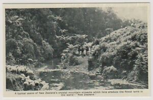 New Zealand postcard - A Typical scene in New Zealand's Crystal Mountain Streams