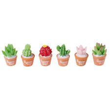 5Pcs Micro-Landscape Resin Cactus Horticultural Bonsai DIY Small Ornaments Toy
