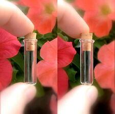 10 Vial Pendants LARGE TUBE w/CORKS flat (min/glass/bottles/bottle/vials/wish)