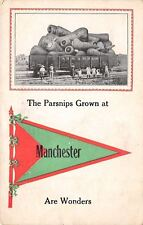"""""""The Parsnips Grown at"""" Manchester New Hampshire~ Are Wonders!~Exaggerated~1914"""